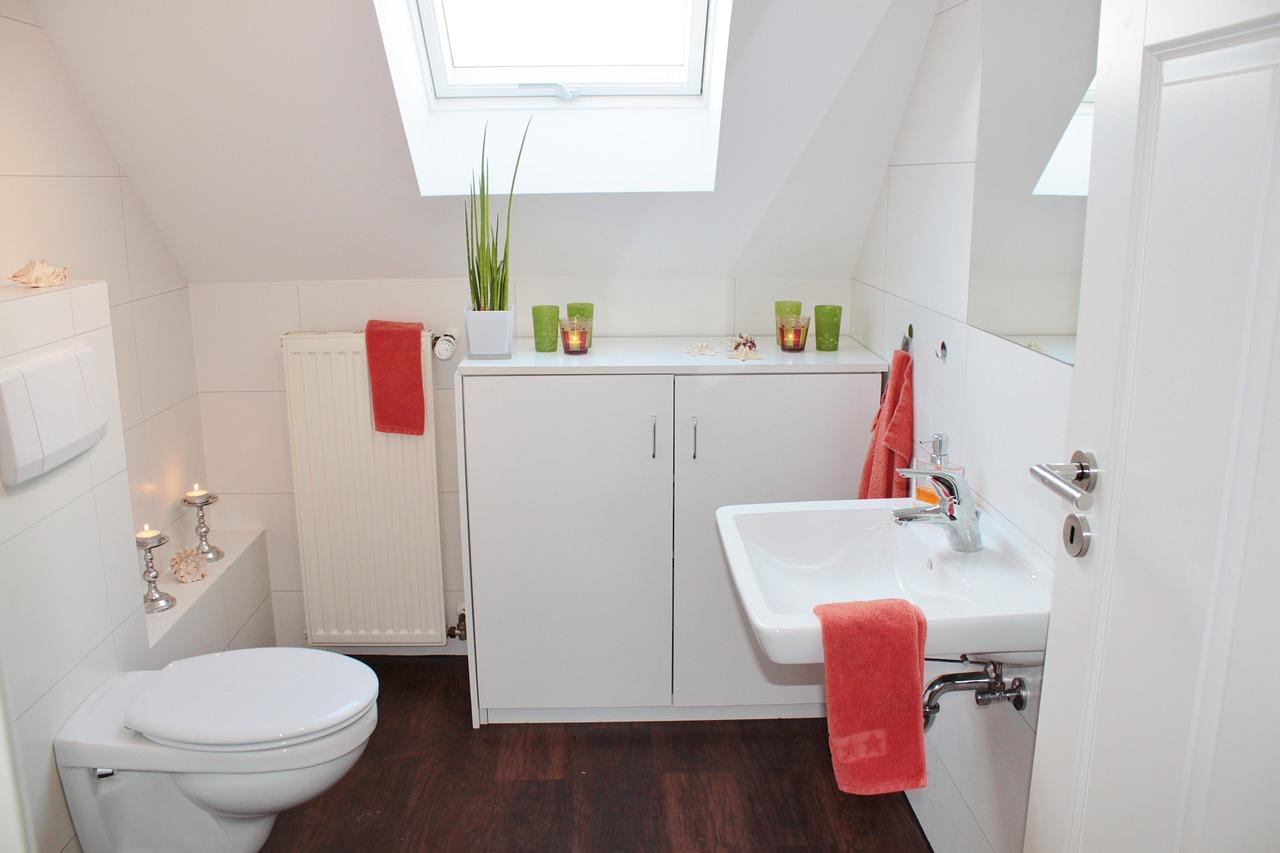 nettoyer fond toilettes WC
